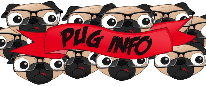 pug-info-main