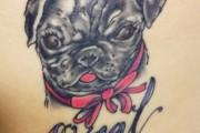 Pug Tattoo Story – Tattoo on Heart