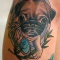 Pug Puppy -Tattooed by Joe Ellis at Lab Monkey in Stirling, Scotland.