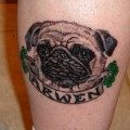 Arwen the Pug - Tattooed by Patrick Adams at Underworld Ink