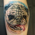 Portrait tatoo of Louie the Pug - Tattooed by Josh Bodwell at Funhouse Tattooing in Tannersville