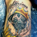Notorious Pug - Brian Brooke at The BeautyMark Tattoo Studio