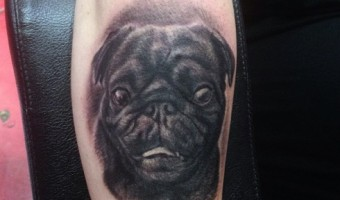 mister-beckham-arm-pug-tattoo-by-camila-rocha-at-la-ink-high-voltage-tattoo-la-usa