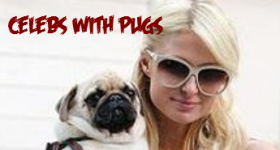 celebs-with-pugs