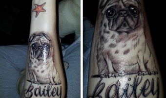forearm-pug-tattoo-on-julie-andersen-by-alex-vasquez-nampa-idaho-usa