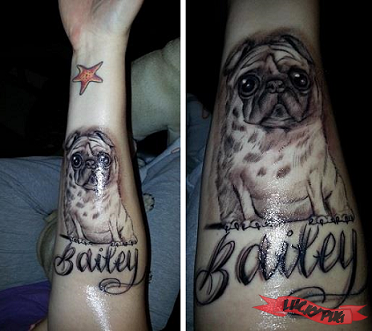 Black and grey arm pug tattoos black realistic for Tattoo shops in nampa