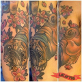 Wrinkly Pug -  Tattooed by Pip Faeros, Brisbane, QLD