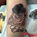Memorial Pug Tattoo - RIP Elvis - Tattooed by Cuong Tcheou of Vanh's Tattoo Studio