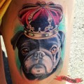 Royal Pug - Tattooed by Susannah Griggs of Eternal Tattoos