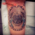 Meeko the Pug - Tattooed by  IG @haultiamreptar