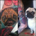 Pickle the Pug - Tattooed by Kate Selkie of the Tattoo Workshop, Brighton, UK