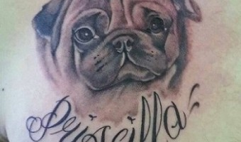chest-pug-tattoo-by-lady-duck-tattoo-in-villanova-del-ghebbo-rovigo-italy