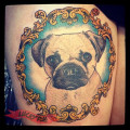 Hugo the Pug - Tattooed by Amanda Cain at Vic Market Tattoo, Melbourne, Australia