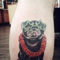 Hawaiian Pug - Submitted by Matt Fuller