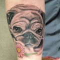 Jasmine the Pug - Artist: Chris Collinsworth at Wihite Lotus Custom Tattoo