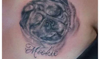 chest-pug-tattoo-on-rachel-hettle-by-jay-debont-at-crimson-torch-tattoo-collective-in-eugene-oregon-usa