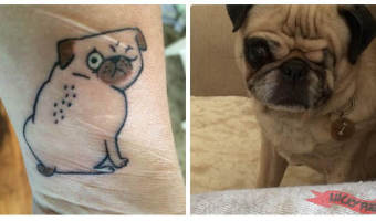 one-eyed-wonder-pug-arm-pug-tattoo-on-tracy-sirc-chandler-inspired-by-gemma-correll