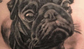 stomach-pug-tattoo-on-toni-by-andy-gally-from-switzerland
