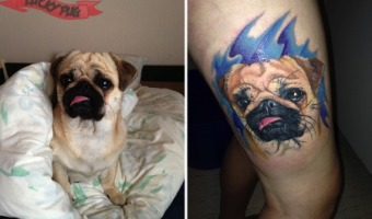 leg-pug-tattoo-on-anja-sondergaard-from-denmark-by-beauty-and-beast-in-inkast-denmark-blog