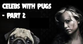 celeb-pugs-2