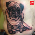 Side Pug Tattoo by Ron Mor of the End is Near, Brooklyn, NY, USA