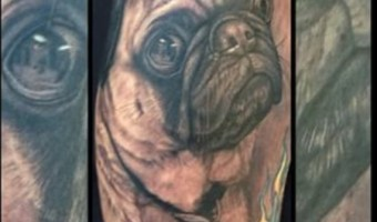 arm-pug-tattoo-of-otis-on-melissa-zanetti-by-pepper-unify-tattoo-co-st-augustine-fl