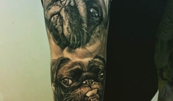 arm-pug-tattoo-on-tia-talvitie-from-finland