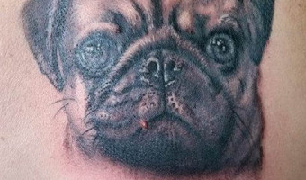 shoulder-pug-tattoo-on-mitsy-coxhead-by-kev-wakefield-swindon-uk