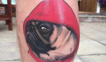 leg-pug-tattoo-of-sebastian-by-dan-molloy-of-legacy-tatt00