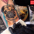 Leg Pug Tattoo by Trine Glue