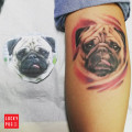 Leg Pug Tattoo on Daniela Steuten, by Marcel
