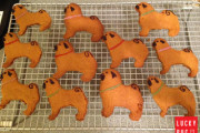 Baker's Guide to Pug Cookies – Gingerbread Pugs
