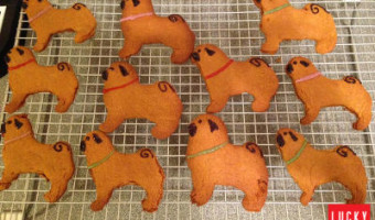 pug-cookies-03