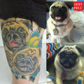 Thigh Pug Tattoo on Kaitlin Mills, by Pete Taylor of Working Man Tattoo