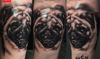 leg-pug-tattoo-by-Mathilde-Nygaard-Sorensen
