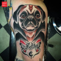 Dracula Pug Tattoo by Marcus Nati