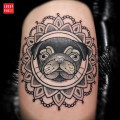 RIP Tully the Pug - by Spike of Human Canvas Tattoo Studio