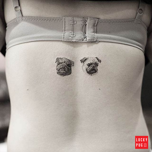 Shoulder Pug Tattoos Back Pug Tattoo Design Photos