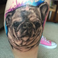 Leg Pug Tattoo by Damascus Tattoo Company