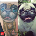 Arm Pug Tattoo on IG brittanyfoxie, by Scott Olive of Rising Sparrow Tattoo Asheville