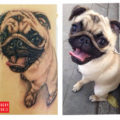 Neil the Pug Tattoo