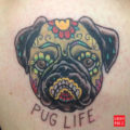 Leg Pug Tattoo on Sonia Leclair, by Angus Philip Byers of DFA Tattoo
