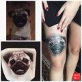 Leg Pug Tattoo on Erdza