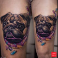 Leg pug tattoo by IG nitsankoala