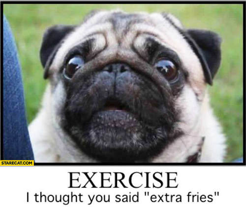 pug-meme-exercise-i-thought-you-said-extra-fries