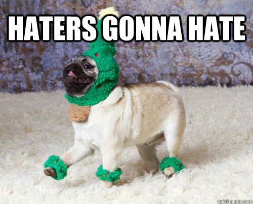 pug-meme-haters-gonna-hate