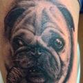 Leg pug tattoo on Jennifer Forster by Davotattoo Aachen