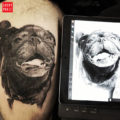 Leg pug tattoo by Chris Mata'afa
