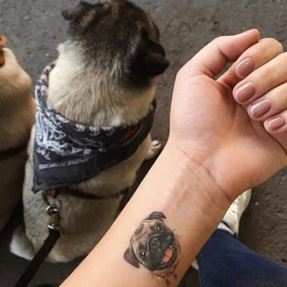 Pug Tattoo by Getsy Torres, Radiant Colors Tattoo Ink