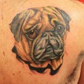 Tattooed by Todd Bailey